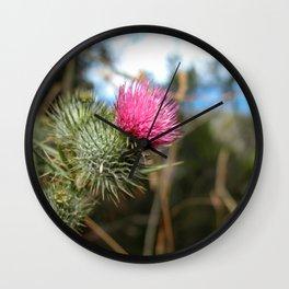 Beautiful pink thistle growing wild Wall Clock