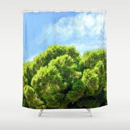 Reach High Shower Curtain