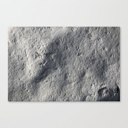 Rock Face Style Canvas Print