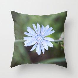 Blue Sow Thistle Throw Pillow