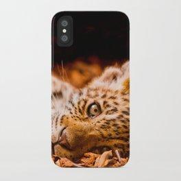 Jaguar Cub Lying in Foliage iPhone Case