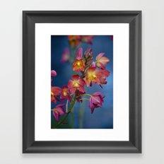 Pink in Spring Framed Art Print