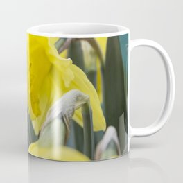 Spring field flowers landscape with bright orange flowers of spring narcissus under sunset light. Se Coffee Mug