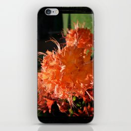 Fire Azalea iPhone Skin