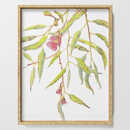 Flowering eucalyptus tree branch Serving Tray