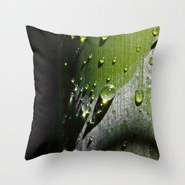 # 290 Throw Pillow