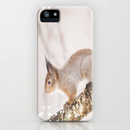Little squirrel jumping on the branch #decor #society6 #buyart iPhone Case