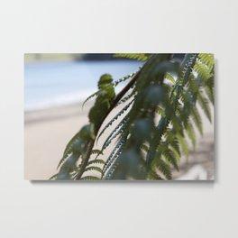 Fern Tree Metal Print