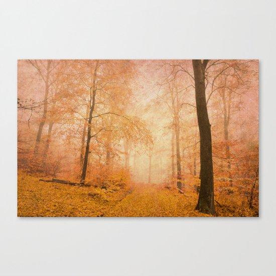 misty pathway Canvas Print