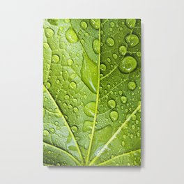 refresh Metal Print