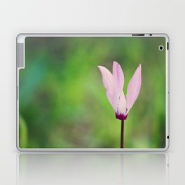 Pink Cyclamen Laptop & iPad Skin