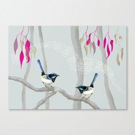 Blue Wren Australian Birds Canvas Print