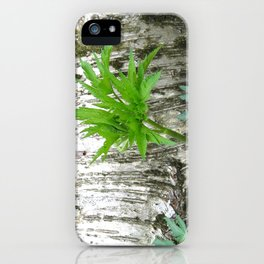 Birch with Greenery iPhone Case