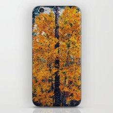 amazing autumn iPhone & iPod Skin