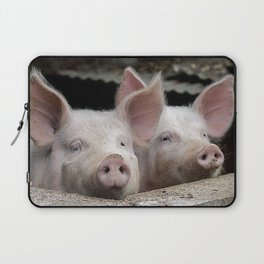 Pig Portrait Laptop Sleeve