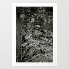Bumpy Bark Art Print