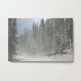 Forest in Calgary Metal Print