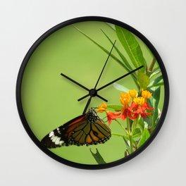 summer in India Wall Clock