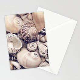Vintage  Sea Shell Collection Coastal Style Stationery Cards