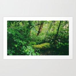 Site No. 26 Art Print