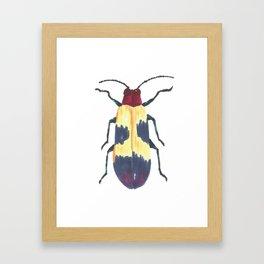 Beetle 3 Framed Art Print