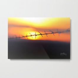 Spiked sunset Metal Print