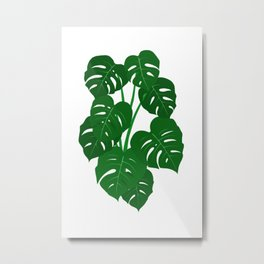 Hand Painted Monstera Deliciosa Tropical Houseplant Art Metal Print