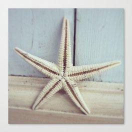 Pale Starfish on Blue Canvas Print
