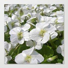 white snow flowers IV Canvas Print