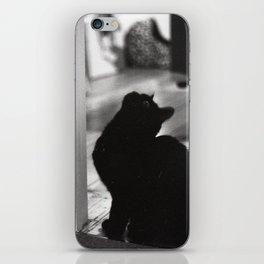 My friends black cat iPhone Skin