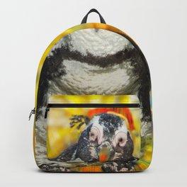 Hermanus Wobble Backpack