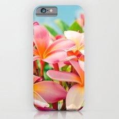 Pua Melia ke Aloha Maui iPhone 6s Slim Case