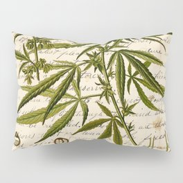 Marijuana Cannabis Botanical on Antique Journal Page Pillow Sham