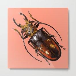 Rubyfire Stag Beetle Metal Print