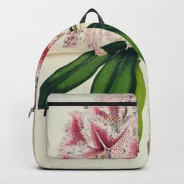 Vintage Botanical Floral Flower Plant Scientific Illustration Duodenum Prince Camille Backpack