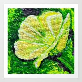 California Poppy - Mazuir Ross Art Print