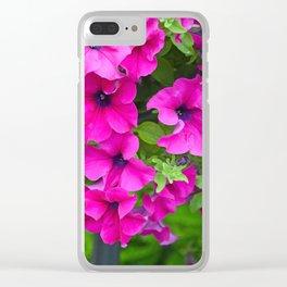 Beautiful pink petunias Clear iPhone Case