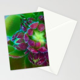 Center of Nature Stationery Cards