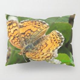 A Mylitta Crescent Butterfly at Rest Pillow Sham