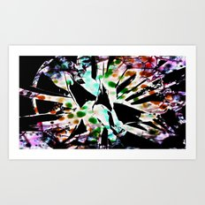 Tie dyed Magpi Art Print
