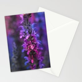 Purple Rain Of Purple Salvia Flowers Stationery Cards