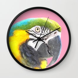 Macaw Portrait Pink Background Wall Clock
