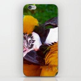 Bird kiss iPhone Skin