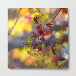 bright spring blossom - abstract edit Metal Print