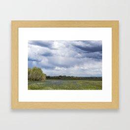 Field of Camas and Dandelions, No. 2 Framed Art Print