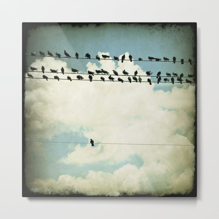 Many and One - photograph of birds on a line Metal Print