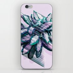 Launch Day iPhone & iPod Skin