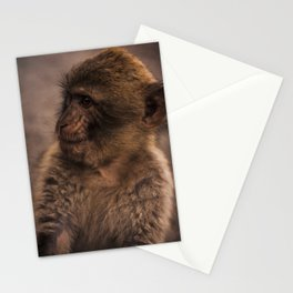 Barbary macaque Stationery Cards