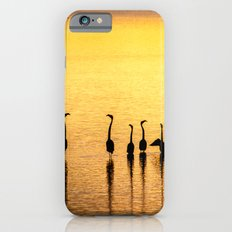 Silhouette of Pink Flamingos Slim Case iPhone 6s