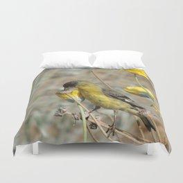 Mr. Lesser Goldfinch Feeds on Seeds Duvet Cover